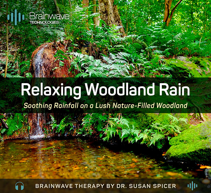 Relaxing Woodland Rain MP3 Audio