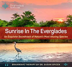 Sunrise in the Everglades
